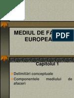 Mediul de Afaceri European