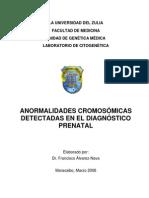 -Cromosomas en el diagn-¦óstico prenatal