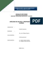 54901607 Analisis y Propuesta de Pei (1)