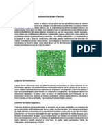 190081204-Transformacion-Celular.pdf