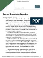 Dragons Return to the Bronx Zoo