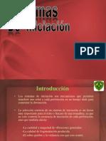 Tronadura - Sistemas de Iniciacion - Pablo Ochoa