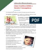 Alteraciones Genéticas Debido a La Endogamia