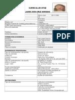 Formato CV Aspirantes