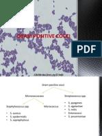 Gram Positive Cocci- Sem 1