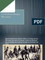La Cultura Negra Peruana