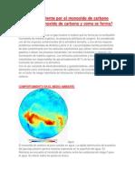 Daños Del Ambiente Por El Monoxido de Carbono