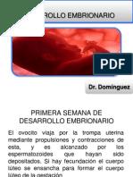 primeraysegundasemanadedesarrolloembrionario3-130311231513-phpapp01