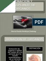 donacinytrasplantederganos-120417193007-phpapp02
