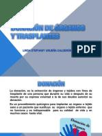 Donacinderganosytrasplantes 121003183527 Phpapp01 (1)