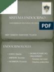 H  ENDOCRINO  P 1