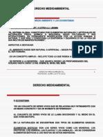 Ust Derecho Medioambiental 10.09.2012
