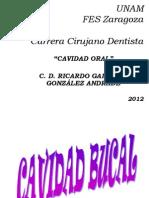 CAVIDAD_ORAL.pps