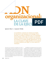 ADN Organizacional