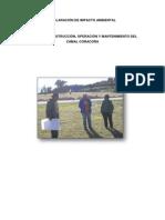 Declaración Deimpacto Ambiental - Coracora - Camal