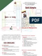 boletin 2012 imprimir