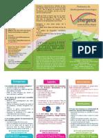 Plaquette de Présentation d'Emergence Comité de Bassin d'Emploi du Pays SUD