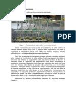Relatório 1 microbiologia