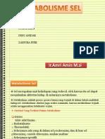 Presentation Ppt Metabolisme Sel