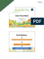 Urban Flood Model