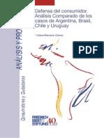 Defensa Del Consumidor Analisis Comparado Argentina Brasil Chile y Uruguay
