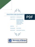 Business Plan (Cruiton.com)