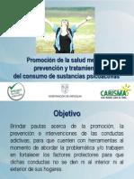 PRESENTACION-PAUTAS-PROMOCION
