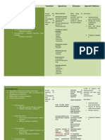 Classification of Antibiotics