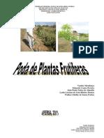 (Poda de Plantas Frut_355feras)