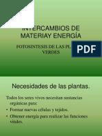 Intercambios de Materiay Energia Fotosintesis Sexto Basico