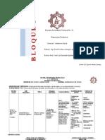 Planeacion Matematicas 1er Grado 2012-2013 1ero y 2do Bloque Completas HASTA 18