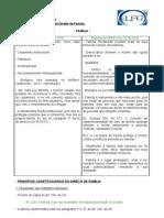 10 - Direito Civil - Aula 03.11.09 - Novos rumos do direito de família