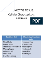 Module 2 - Connective Tissue Cells