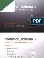 Common Schema Pllondon 2013 0