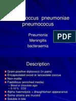 Streptococcus pneumonia.pptx