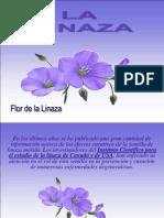 Lalinaza Rosa