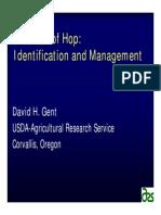 Hops-Diseases