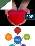 Areas de Inteligencia Emocional