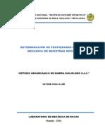 Informe - Don Eliseo