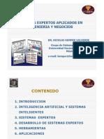 Sistemas expertos aplicados en ingeniería y negocios - Dr. Nicolas Kemper