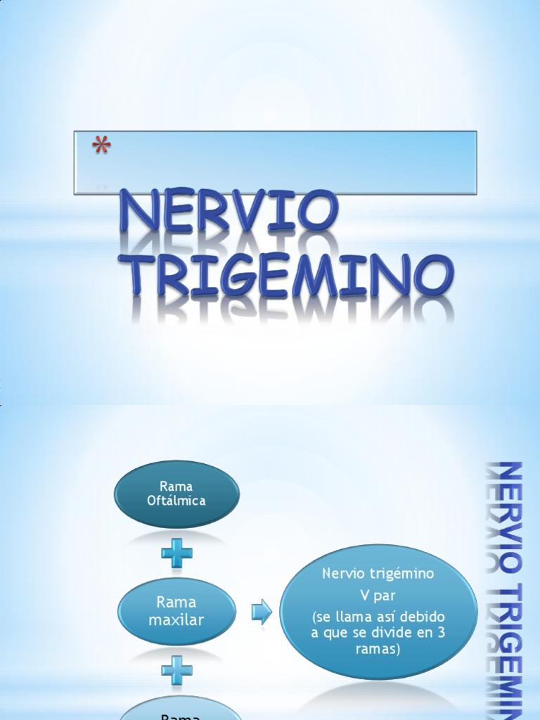 Anatomia Del Trigemino