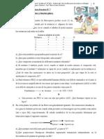 Trabajo Práctico Nº 7,8-14