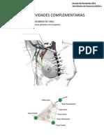Actividades TP2 PDF