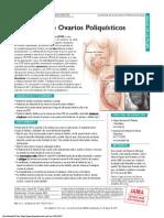 PDF Pat 020707