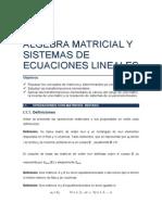 GTEL-Algebra Tema 1.pdf