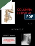 Columna Cervical y Dorsal