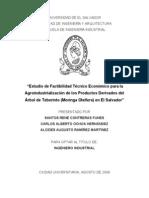 Estudio de Factibilidad Técnico Económico Para La Agroindustrialización de Los Productos Derivados Del Árbol de Taberinto %28Moringa Oleífera%29 en El Salvador
