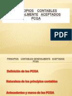 Contabilidad Pcga Exposicion Final