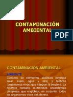 6-CONTAMINACIÓN AMBIENTAL.ppt