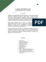 El Agua, Propiedad Vital de Todos - DR. ING. ARTURO ROCHA FELICES.pdf